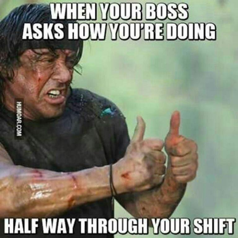 Dasar Boss